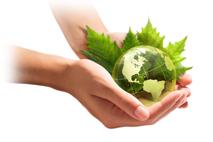 Wir schonen die Umwelt und verwenden beste, frische Zutaten aus der Region.